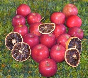 Äpfel - frisch und gesund mit vielen Vitaminen, Mineralstoffen und sekundären Pflanzenstoffen - Ernährungsberatung Ledermann