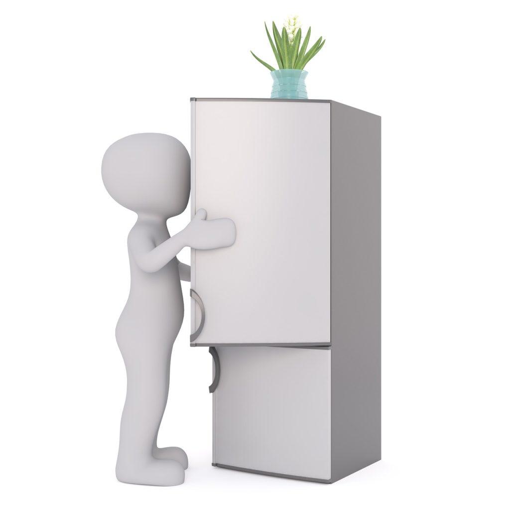Feldsalat wird im Kühlschrank gelagert - Ernährungsberatung Ledermann