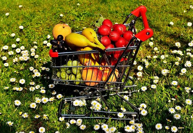 Bio-Obst und Bio-Gemüse - Ernährungsberatung Martina Ledermann